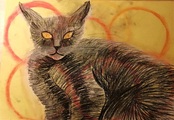 Kočka Monika Fornousová