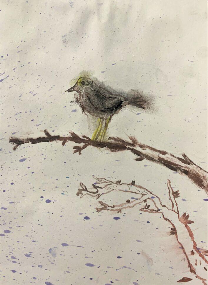 Zimní Zátiší S Ptáčkem Tobík Míka