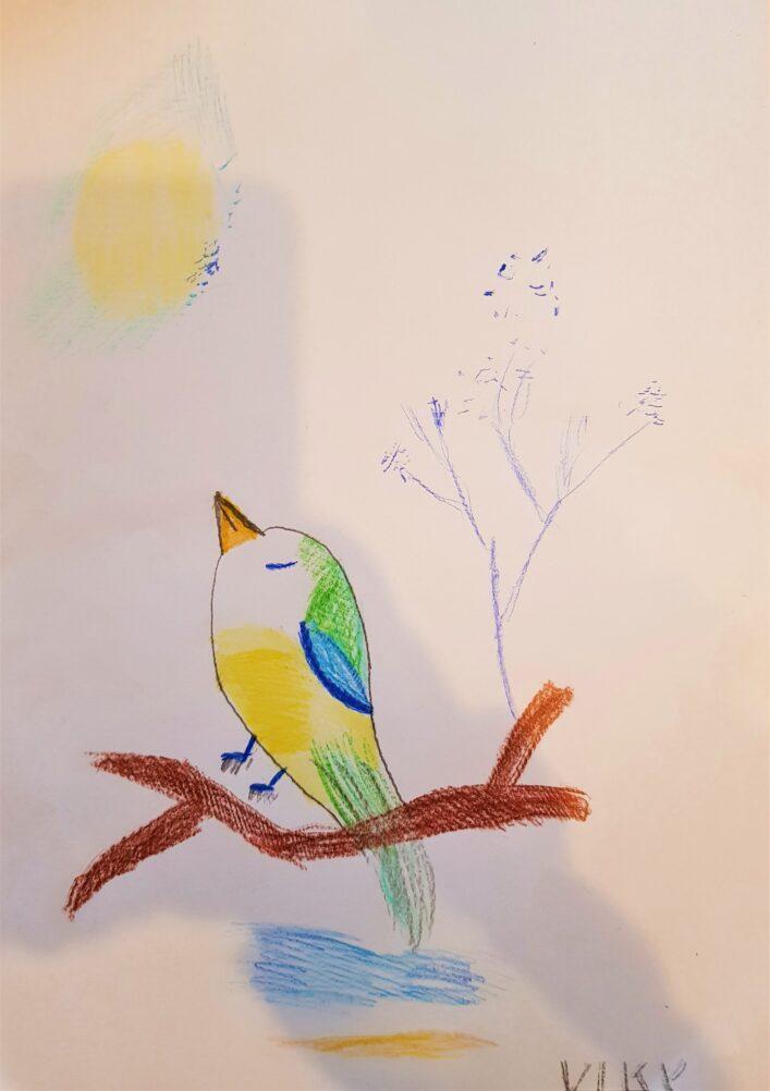 Zimní Zátiší S Ptáčkem Vendula Šulcová